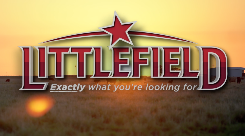 Littlefield Commercials // TV & Promotional