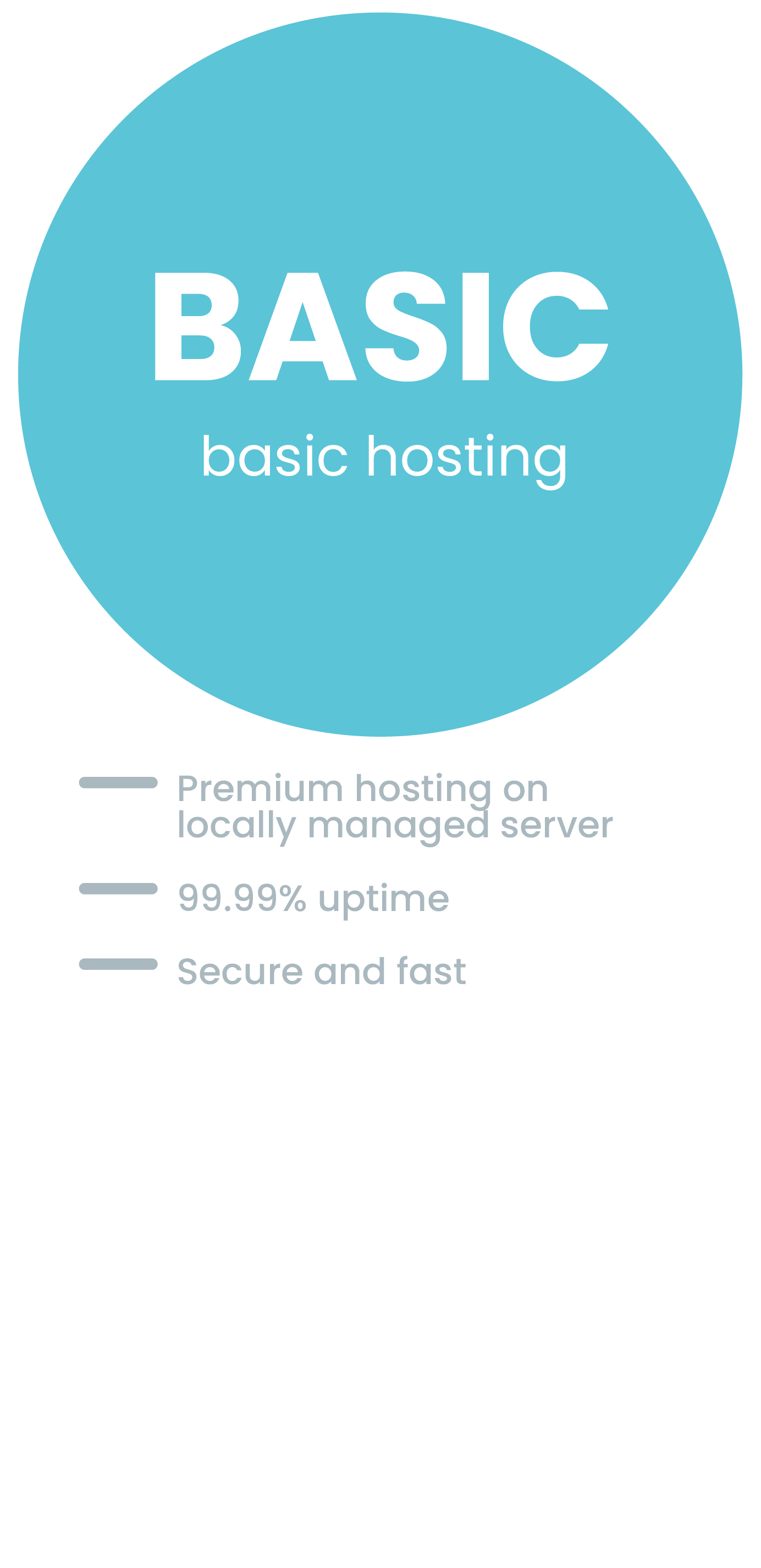 Basic Website Hosting Package Complete with 99.99% uptime