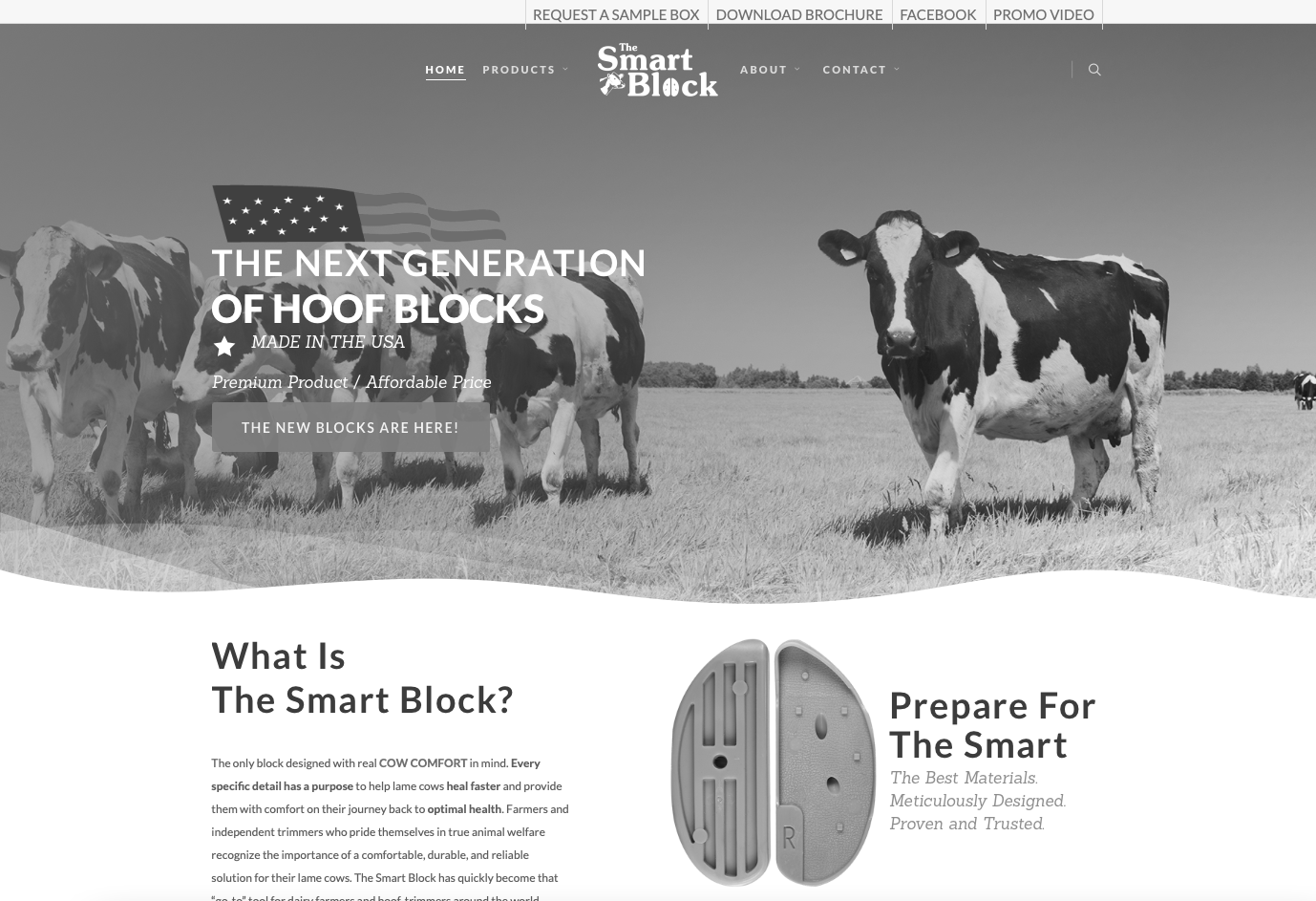 website design for a dairy related company in New Mexico